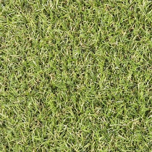 Travní koberec Star Lawn CAMELIA , Šíře role Šíře role 2m